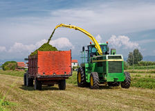 Harvester cutting field and loading into a Trailer Royalty Free Stock Images