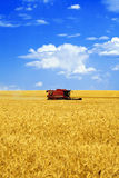 Harvester in the field Royalty Free Stock Images
