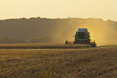 Harvester in the field gather the harvest Royalty Free Stock Images