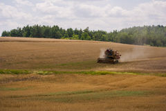 Harvester on a field. Harvester gathers the wheat crop in a field Royalty Free Stock Images
