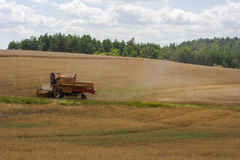 Harvester on a field. Harvester gathers the wheat crop in a field royalty free stock photo