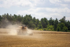 Harvester on a field. Harvester gathers the wheat crop in a field Stock Photography