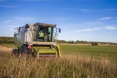 Harvester on a field. Green, harvester on a field stock image