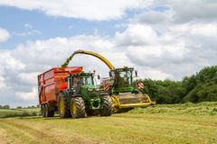 Harvester forager cutting field, loading Silage into a Tractor Trailer. John deere forager harvester cutting grass hay field, loading silage into a tractor Royalty Free Stock Image