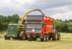 Harvester forager cutting field, loading Silage into a Tractor Trailer. John deere forager harvester cutting grass hay field, loading silage into a tractor Royalty Free Stock Photo