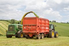 Harvester forager cutting field, loading Silage into a Tractor Trailer. John deere forager harvester cutting grass hay field, loading silage into a tractor Stock Photos