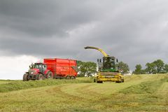 Harvester forager cutting field, loading Silage into Tractor Trailer. John deere forager harvester cutting grass hay field, loading silage into a tractor trailer Royalty Free Stock Photography