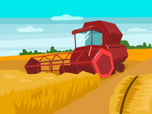 Harvester gather wheat cartoon vector illustration. Harvester gather wheat. Harvesting landscape. Cartoon colorful vector illustration Royalty Free Stock Photography