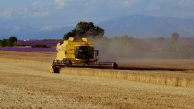 Harvester gathers the wheat crop stock footage