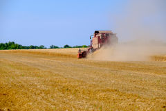 Harvester gathers the wheat crop Stock Image