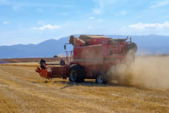 Harvester gathers the wheat crop Royalty Free Stock Photography