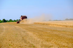 Harvester gathers the wheat crop Royalty Free Stock Image