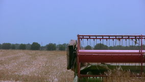 Harvester gathers the wheat. Part close-up Royalty Free Stock Photos