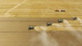 Harvester harvest ripe wheat drone stock footage
