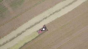Harvesting rapeseed stock video footage