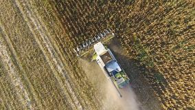 Harvester harvests corn. Collect corn cobs with the help of a combine harvester. Ripe corn on the field. Stock Photo