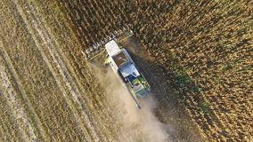 Harvester harvests corn. Collect corn cobs with the help of a combine harvester. Ripe corn on the field. Royalty Free Stock Photos