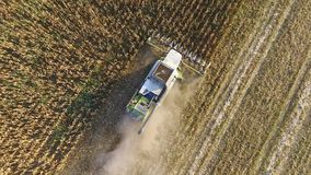 Harvester harvests corn. Collect corn cobs with the help of a co Royalty Free Stock Photography