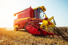 Harvester harvests wheat on field royalty free stock images