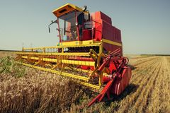Harvester harvests wheat on field stock photography