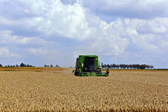 Harvester In Corn Fields Royalty Free Stock Photography
