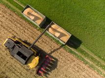 Drone view of harvester loading off corn on trailers stock photo