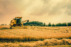 Harvester machine on a field Royalty Free Stock Image