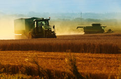 Harvester machine harvest cereal wheat Royalty Free Stock Images