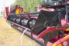 Harvester machine to harvest wheat field working. Combine agriculture harvesting golden ripe . Royalty Free Stock Photo