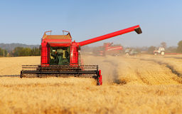 Harvester machine on wheat field Royalty Free Stock Image