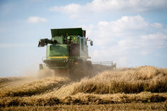 Harvester mowing in the field. Summer, harvest time. Sunny weath stock image