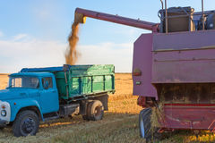 Harvester pours grain into a truck Royalty Free Stock Photos