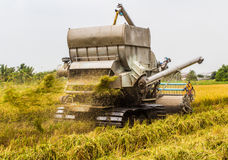 Harvester in rice field Royalty Free Stock Photos