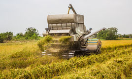 Harvester in rice field Stock Photography