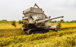 Harvester in rice field Royalty Free Stock Image
