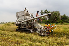 Harvester in rice field Royalty Free Stock Photography