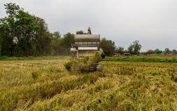 Harvester in rice field Stock Photos