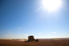 Harvester in soybean planting . Royalty Free Stock Photography