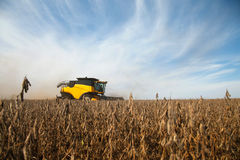 Harvester in soybean planting . Royalty Free Stock Image