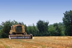 Harvester thresher on wheat field Royalty Free Stock Photos