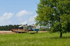 Harvester-trasher under arbete royaltyfri fotografi
