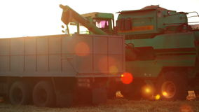Harvester is Unloading Grain to the Truck and Lens Flare. Evening sun. Harvester approaching to the truck and unloading grain stock footage