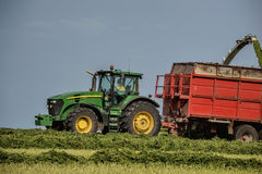 Harvester unloading into a tractor trailer. Combine harvester mows the field. Farming tractor collecting haystack. Slovakia Stock Photos