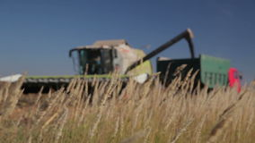 Harvester Unloads Grain stock video footage