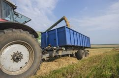Harvester unloads wheat Stock Images