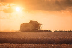 Harvester in wheat field Royalty Free Stock Photography