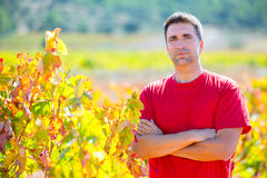 Harvester winemaker farmer proud of his vineyard Royalty Free Stock Photography