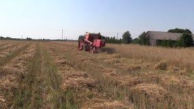 Harvester work barley corn field. Activities rural countryside stock video footage