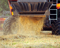 Harvester at work royalty free stock images