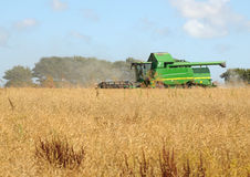HARVESTER AT WORK Royalty Free Stock Photography